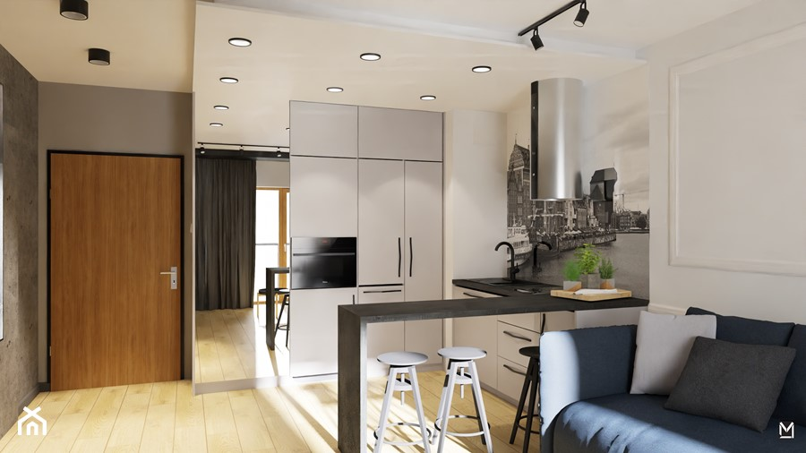 Salon z aneksem kuchennym - zdjęcie od jaminska.pl