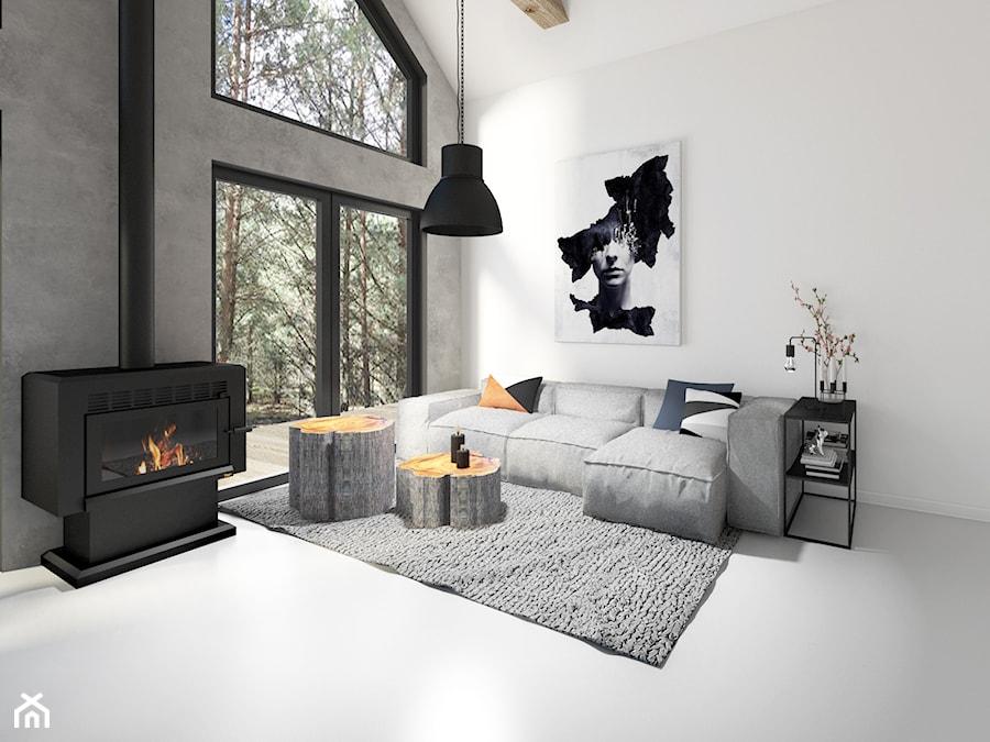 Modern Barn - Mały szary biały salon, styl minimalistyczny - zdjęcie od Pracownia Projektowa Decoretti - Agata Jachimowicz