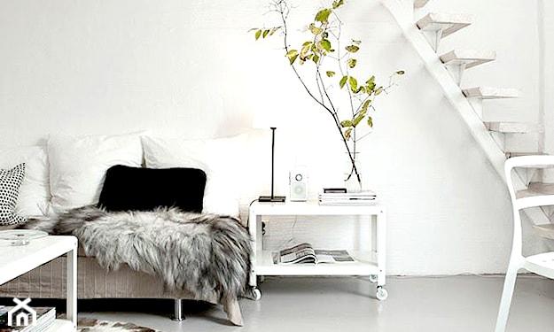 biały salon i dywaniki z motywami zwierzęcymi