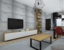 Mieszkanie W Loftowym Klimacie Duzy Szary Bialy Salon Styl