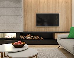Salon+-+zdj%C4%99cie+od+SYMETRIA+%7C+pracownia+architektury