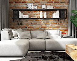 PROJEKT INDUSTRIALNO-RUSTYKALNY 55m2 - Mały szary salon, styl industrialny - zdjęcie od SYMETRIA | pracownia architektury - Homebook