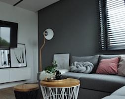 Mieszkanie Kraków,50m2. Realizacja - Salon, styl skandynawski - zdjęcie od STUDIO PNIAK - Homebook