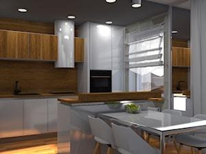 Mieszkanie Y-GRAY SKANDY - Średnia otwarta szara kuchnia dwurzędowa w aneksie z oknem, styl nowoczesny - zdjęcie od YSTER architecture