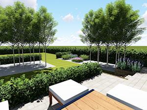 W prostych liniach - Ogród, styl minimalistyczny - zdjęcie od studio48