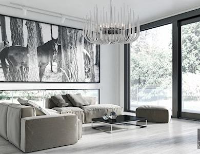 Salon - zdjęcie od MOLLINI