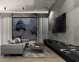 APARTAMENT TYCHY - Duży szary salon, styl nowoczesny - zdjęcie od EDYTA SOWIŃSKA INTERIOR DESIGN - Homebook