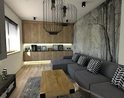 Dom pod Koninem - Mały szary salon, styl industrialny - zdjęcie od P.S.-projekt