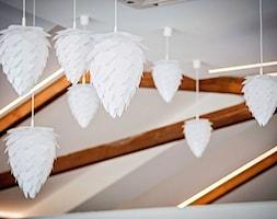 restauracja k. Bełchatowa - Wnętrza publiczne, styl minimalistyczny - zdjęcie od BAK Architekci - Homebook