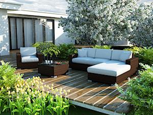 Jak urządzić ogród sprzyjający letnim spotkaniom? Poradnik krok po kroku