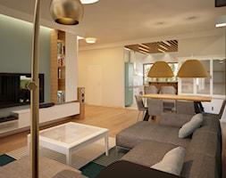 Dom pod Warszawą - Salon, styl nowoczesny - zdjęcie od PUKU STUDIO - Homebook