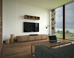 Salon - zdjęcie od 3d@piotrwachulec.pl - Homebook