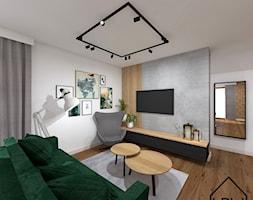Salon z ukrytą garderobą - Salon, styl nowoczesny - zdjęcie od KRU design - Homebook