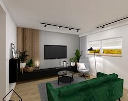 Salon+-+zdj%C4%99cie+od+KRU+design