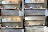 metamorfoza mebli z laminatu - pomalowanie mebli kuchennych na biało