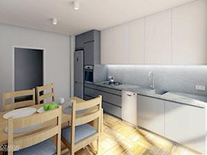 Projekt 05 - Średnia zamknięta biała szara kuchnia jednorzędowa w aneksie z oknem, styl nowoczesny - zdjęcie od Maciej Różański Pracownia Projektowa
