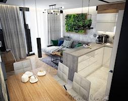 Salon+z+kuchni%C4%85+-+zdj%C4%99cie+od+byMadeline