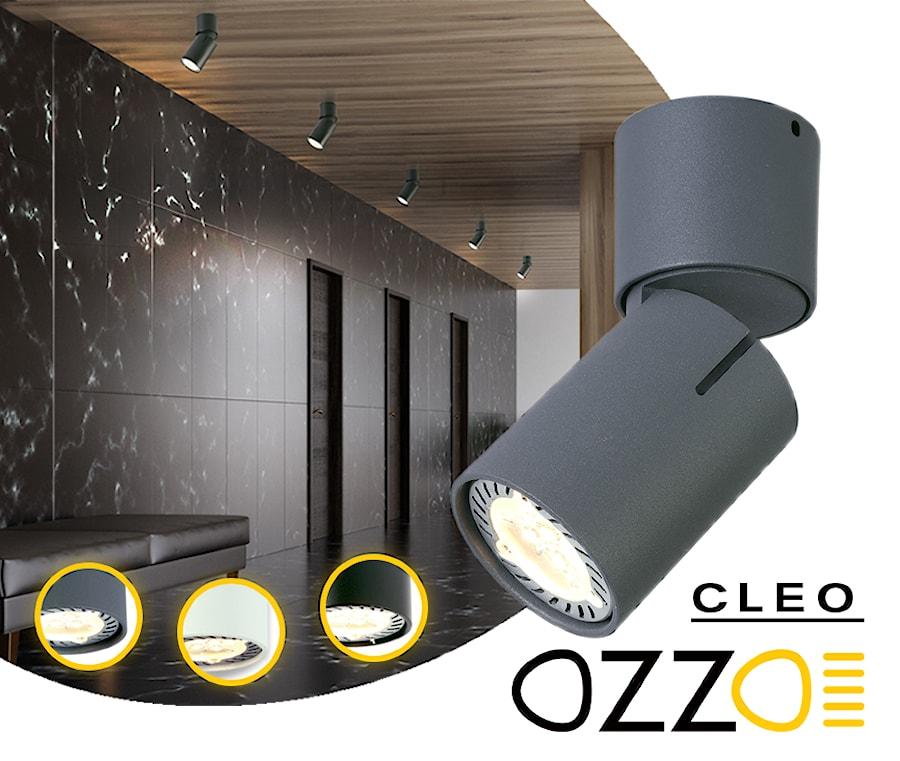 b5771582685d52 Aranżacje wnętrz - : Cleo Ozzo - Sklep Lumenpro. Przeglądaj, dodawaj i  zapisuj najlepsze
