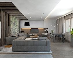 Salon+-+zdj%C4%99cie+od+BAGUA+Pracownia+Architektury+Wn%C4%99trz