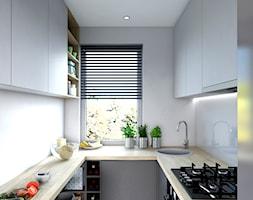 Kuchnia+-+zdj%C4%99cie+od+Buffalo+Architektura