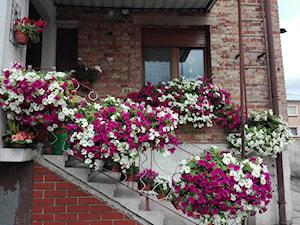 #kompozycjekwiatowe - Mały taras z przodu domu z tyłu domu - zdjęcie od Honorata Nowak 3