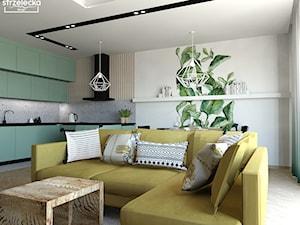 Salon z aneksem kuchennym w stylu BOHO