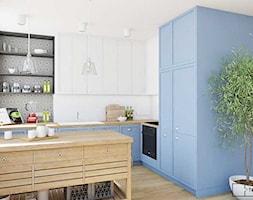 Płytki na ścianie w kuchni - zdjęcie od Cerames