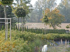 Ogród glamour - Ogród z oczkiem wodnym - zdjęcie od Studio B architektura krajobrazu Bogumiła Bulga