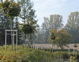 Ogr%C3%B3d+-+zdj%C4%99cie+od+Studio+B+architektura+krajobrazu+Bogumi%C5%82a+Bulga