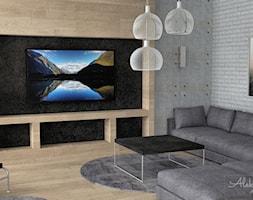 Duży narożnik w salonie - zdjęcie od Aleksandra Tymińska Projektowanie Wnętrz - Homebook