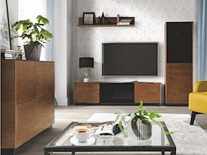 Salon nowoczesny czy klasyczny? Jakie wybrać meble, by połączyć jedno i drugie?
