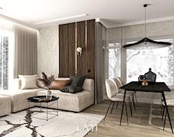 Dom III, Łódź - Salon, styl nowoczesny - zdjęcie od LÄTT Studio Wnętrz - Homebook