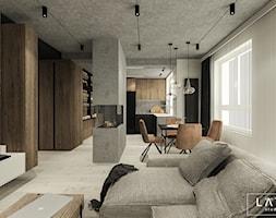 Salon+-+zdj%C4%99cie+od+L%C3%84TT+Studio+Wn%C4%99trz