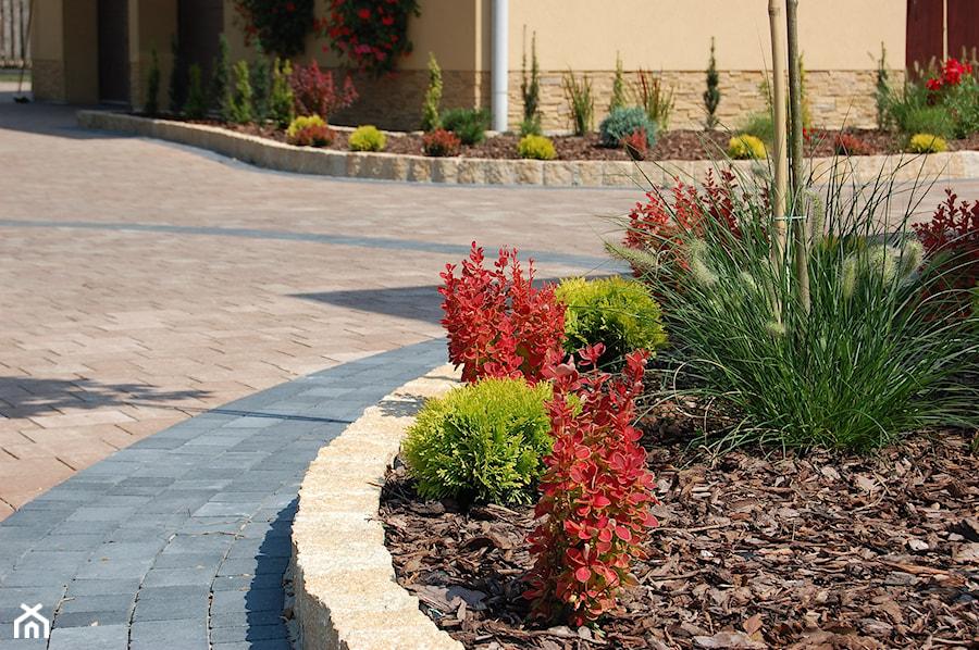 5 - Średni ogród przed domem, styl tradycyjny - zdjęcie od Lapisgreen