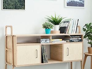 plywoodproject - Artysta, designer