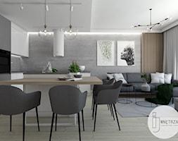 Salon z aneksem kuchennym - zdjęcie od IJ Wnętrza - Homebook
