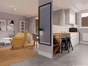 Projekt kuchni i salonu IKEA