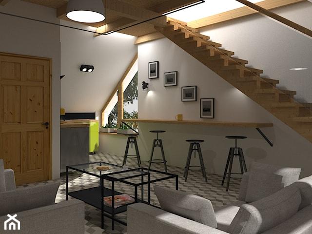 Apartamenty na wynajem - projekty aneksów kuchennych z salonem