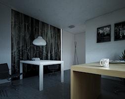 wnętrza nowoczesne - Biuro, styl nowoczesny - zdjęcie od Majo Design Studio