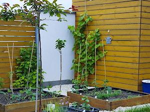 Ogród - Ogród z ogródkiem warzywnym - zdjęcie od angie.house