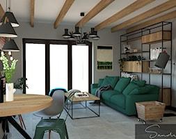 Salon+z+zielon%C4%85+sof%C4%85+-+zdj%C4%99cie+od+sandroom