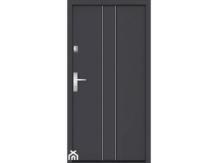 Drzwi do domów GERDA NTT QUADRO - KPS Regen4