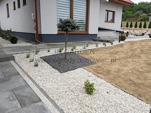 In Garden. Projektowanie ogrodów Katarzyna Skrzyńska-Pytel - zdjęcie od InGarden. Projektowanie ogrodów Ostrowiec Św.