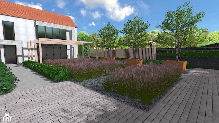 Minimalistyczny ogród traw - Ogród, styl minimalistyczny - zdjęcie od Rock&Flower studio