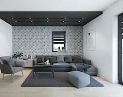DOM 01. Mogilno - Mały szary biały salon, styl nowoczesny - zdjęcie od Projekt M pracownia architektoniczna