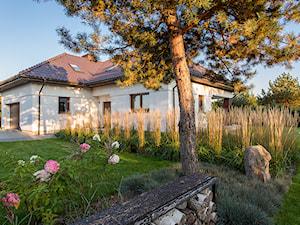 Ogród trawiasty - Średni ogród przed domem, styl minimalistyczny - zdjęcie od Naturalnie Studio - pracownia architektury krajobrazu