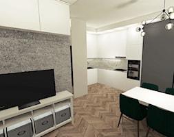 Salon w kawalerce - zdjęcie od By Castana Autorska pracownia projektowa