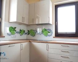 Szkło Do Kuchni Warzywa I Owoce Kolekcja Mojeszklopl