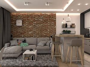 Pokój z aneksem kuchennym, czerwona cegła - zdjęcie od OroConcept Anna Orowiecka-Stanisławska