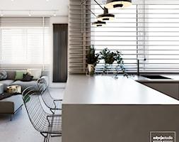 Kuchnia+-+zdj%C4%99cie+od+EDYCJA+studio